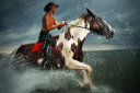Pinto Horse Galloping in the Water