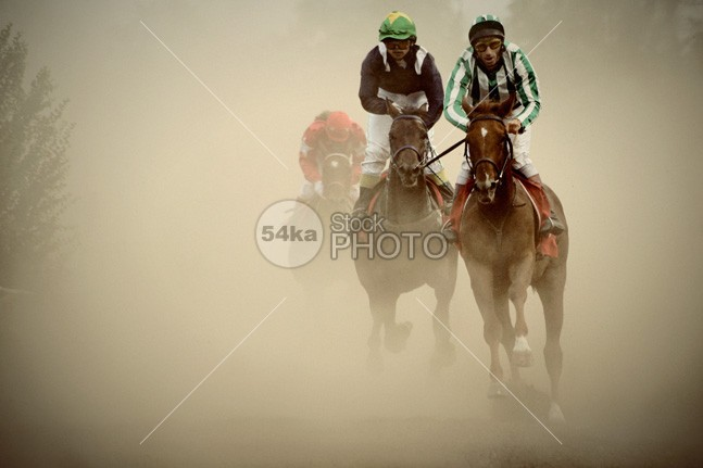 Gamble horses in cloud of dust sunset running horses Running riders Powerful pounding outback multiple mighty many legs kicking horsemanship horse hooves hoof ground gamble horses Galloping gallop foot field fast horses fast equine equestrian dusty dust dusk dirt cloud closeup close-up close backlit animal afternoon 54ka StockPhoto