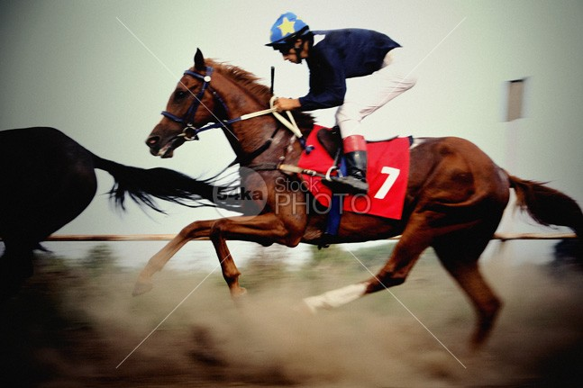 Jockey riding fast gambling horse win turf thoroughbred sticks stallion stakes sport speed silks racehorse race national mare jumps Jockey hurdle hunt horse handicap gaming game gamble futurity furlong filly fence fast equestrian sport competitor competition bookie bet athlete animal 54ka StockPhoto