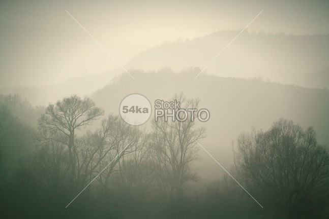 Autumn Morning Mist in The Forest woods weather trees tree tranquil spring sky Scenics scene rural ridge range photo path outdoor orange nobody nature Mystery mountain Morning mood mist Magic light landscape horizontal hill high green grass forest footpath Foggy Fog fantasy fall Extreme evil evening darkness dark country cloud church building autumn 54ka StockPhoto