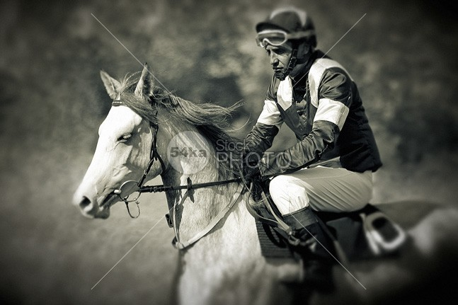 Jockey and Horse Photo Portrait Before Start Racing touching Togetherness Success stallion sports sport serendipity Senior Adult Riding portrait People Loving Jockey Human Head Horseback Riding horse Friendship Extreme Sports equestrian Character Traits Caucasian black and white beauty b&w Arabian Horse Animals And Pets Animal Head animal 54ka StockPhoto