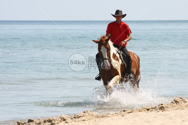 Man Riding Horse in the Water young waves wave water vacation travel training trail tourism swimming summer sport splash sky seaside sea sand saddle Riding rider ride person People outside outdoors outdoor one ocean nature mare mane man Male Lifestyle landscape Lake journey Jockey horseman horseback horse holidays holiday fun equine equestrian cowboy coast brown blue beauty beautiful beach animal Adventure adult Activity active 54ka StockPhoto