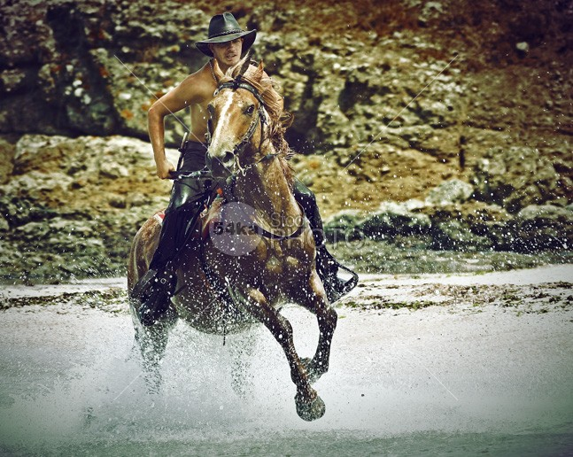 Cowboy Riding Horse In The Water And Splash Water Drops wet western west Water Drops water vertical travel Through splash speed ShattilRozinski Shattil Setting Sending Rush Rural Life Running Runner run Rozinski river Riding ride ranch Quick Powerful power pinto Perissodactyla People Oregon nature Motion mammal Leadership Leader Lead Hurry horse history His high gallop flying fast Exciting Excitement Excited Equus Perissodactyla equus equine Equidae environment energy Energetic Effort drops domestic Determined Determination Creek cowboy country Chase challenge animal American America air Aggressive Aggression Adventure action 54ka StockPhoto