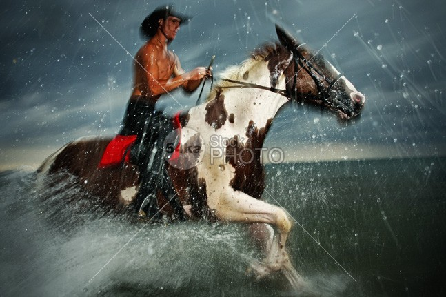 Pinto Horse Galloping in the Water young wild wet water summer strong spray splash speed sea Runner run rider power photo outdoor ocean moving Motion mare mane mammal Lake image horse horizontal gallop freedom free equine equestrian blue black beauty beautiful Art animal active 54ka StockPhoto