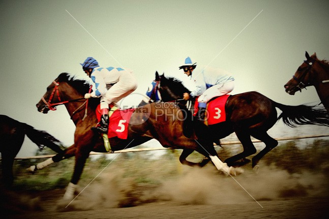 Amazing fast horses – flat running competition winner win whip track thrilling thoroughbred strength speed running horses run rival rider ride racetrack race track Quick power Leader Lead Jockey horse racing horse race horse gaming gambling gamble gallop finish fast Exciting Determined Determination competitor competition compete colorful 54ka StockPhoto