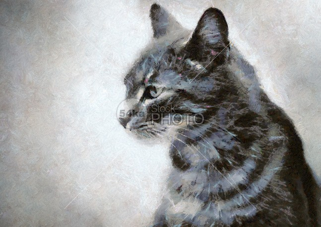 Gray Cat Painting whiskers studio small pretty portrait pet painting one nature looking kitty kitten isolated image head grey gray eyes eye drawing cute closeup cats cat blue beautiful Art animal 54ka StockPhoto