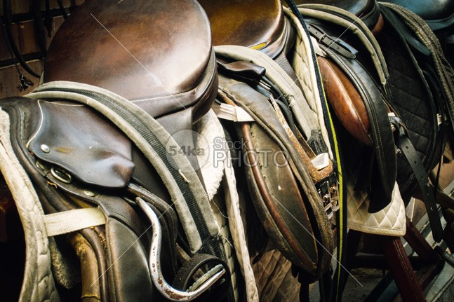 Horse saddle wild western vintage used tack summer strap stirrup stallion stable sport sit seat saddle rural Running rope Riding ride retro rest reigns ranch purebred photo pet outside outdoor old nature meadow mammal Jockey horseback Horse saddle horse horizontal hobby green field farm equipment equestrian domestic cowboy countryside country control chestnut brown background Art animal 54ka StockPhoto