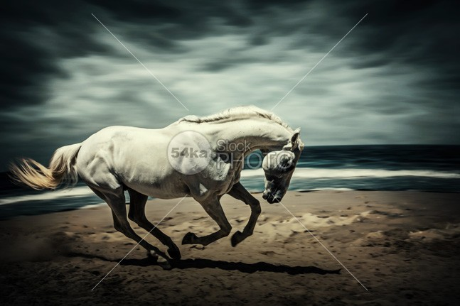 Horse Running On Beach shallow sea Scenics rural Runner run reserve race power pond photo pet outdoor nature moving Motion mare mammal light landscape Lake jump horses horse water horse selection horse image horse herd hair hack gray galloping horse gallop french freedom free forward force fast farm equine equestrian ecotourism domestic country best photography beautiful beach background Art animal agility 54ka StockPhoto