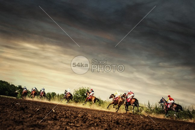 Running horses competition on the stormy sky racetrack racehorse racecourse race Quick power mud Moody Sky moody many land Jockey horses horse running horse horizon hooves hippodrome gamble gallop front field fast farmland farm far equine equestrian beauty equestrian dramatic dirt derby darkness dark sky dark clouds dark course Couple countryside country competitor competition compete cloudy cloud black bet best equine photographer arable animal amazing horses 54ka StockPhoto