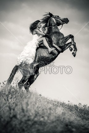 Woman in dress riding chestnut black rearing stallion ride rearing stallion rearing rear purebred pretty pony outdoors one nature meadow mark mare mane mammal lusitania kid jump horsewoman horseback horse herd happy happiness girl gelding gallop fur forest field fence female farm equine equestrian beauty equestrian dress dark chestnut canter brown bridle blue black beauty and the beast beauty beautiful animal ammunition amazing stallion 54ka StockPhoto